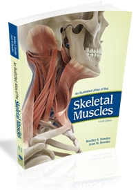 An Illustrated Atlas of the Skeletal Muscles, 4e