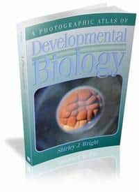 A Photographic Atlas of Developmental Biology