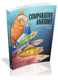 Comparative Anatomy: Manual of Vertebrate Dissection, 3e