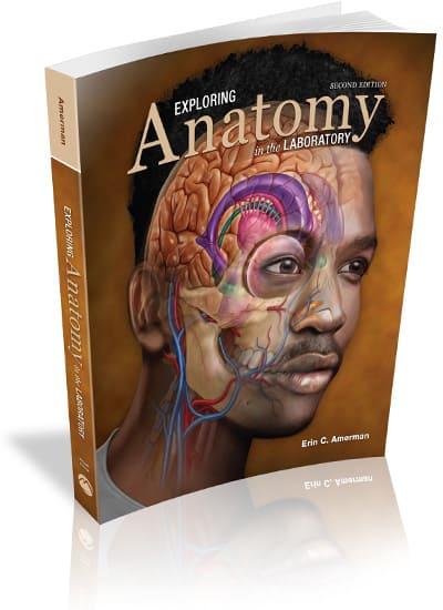 Exploring Anatomy in the Laboratory, 2e