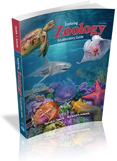 Exploring Zoology: A Laboratory Guide, 3e