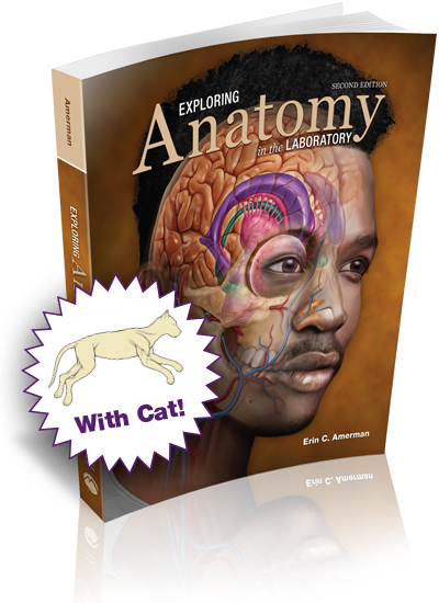 Exploring Anatomy in the Laboratory, 2e with Cat Dissection
